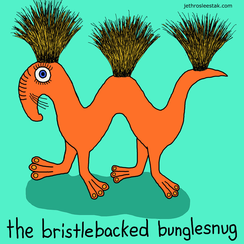 The Bristlebacked Bunglesnug