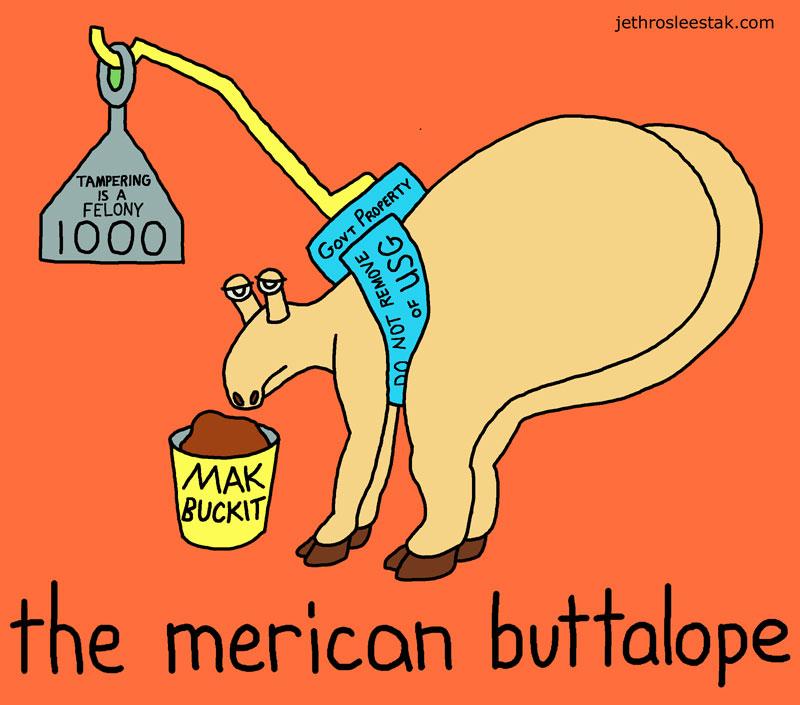 The Merican Buttalope