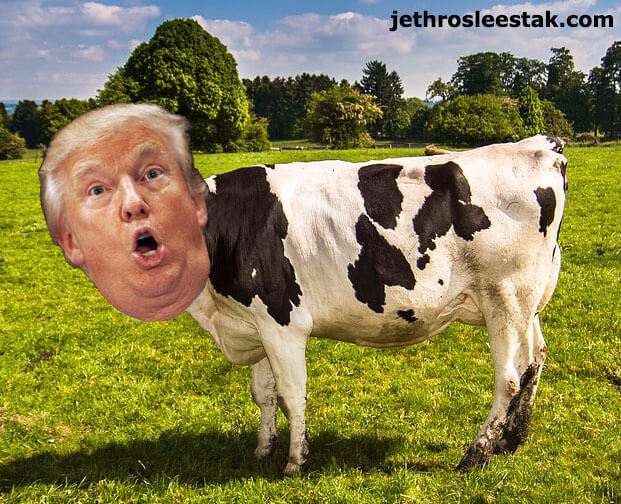 Donald Trumpimal Cow