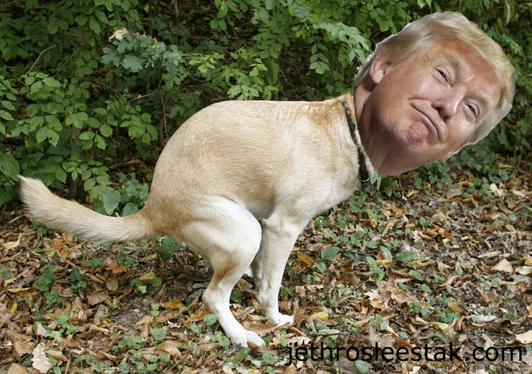 Donald Trumpimal Dog