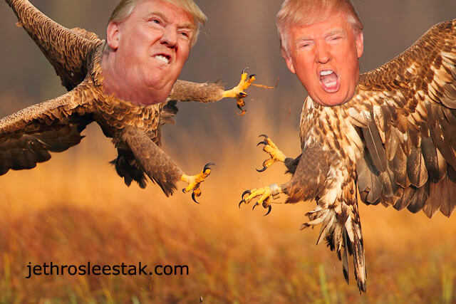Donald Trumpimal Eagles