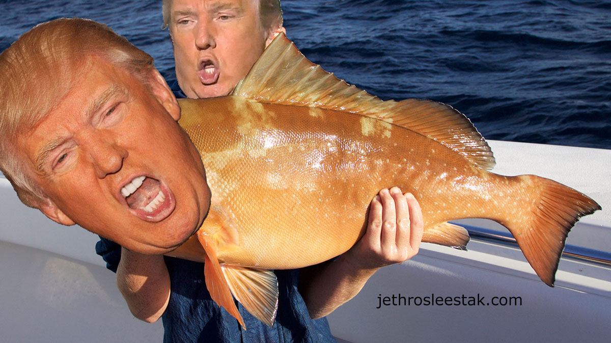Donald Trumpimal Grouper