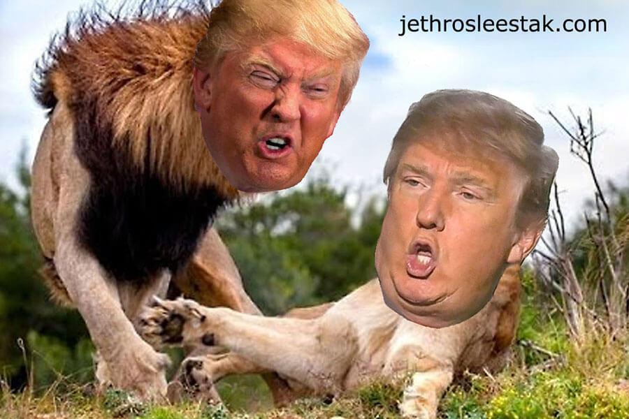 Donald Trumpimal Lions