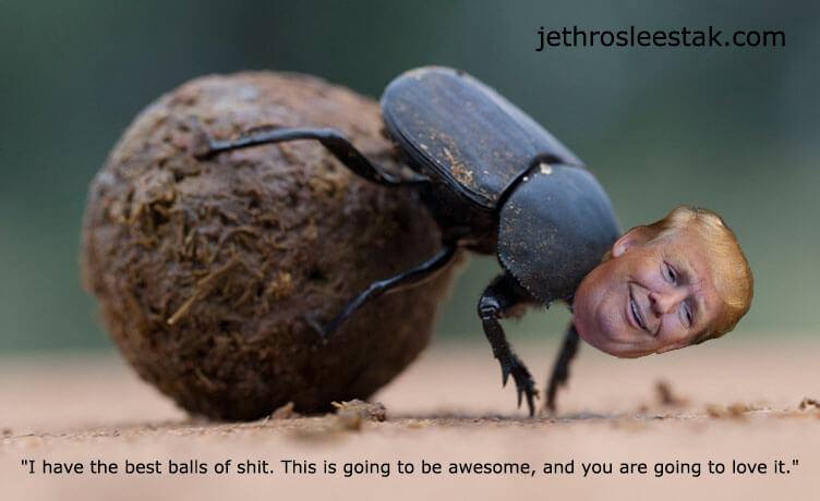 Donald Trumpimal Tumble Bug