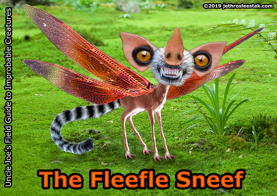 The Fleefle Sneef Trading Card