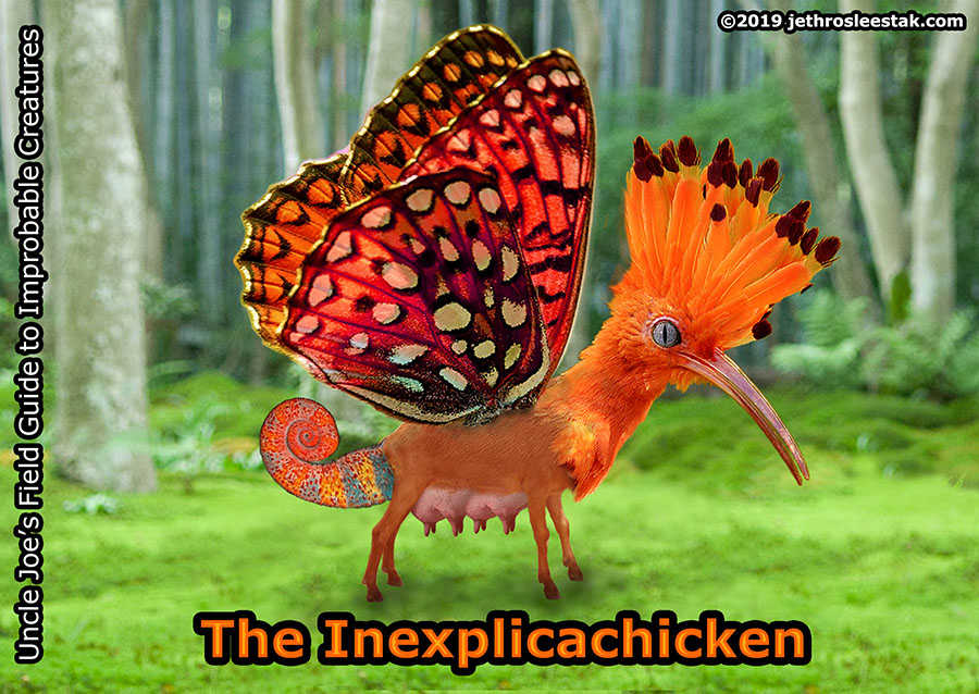 The Inexplicachicken Trading Card