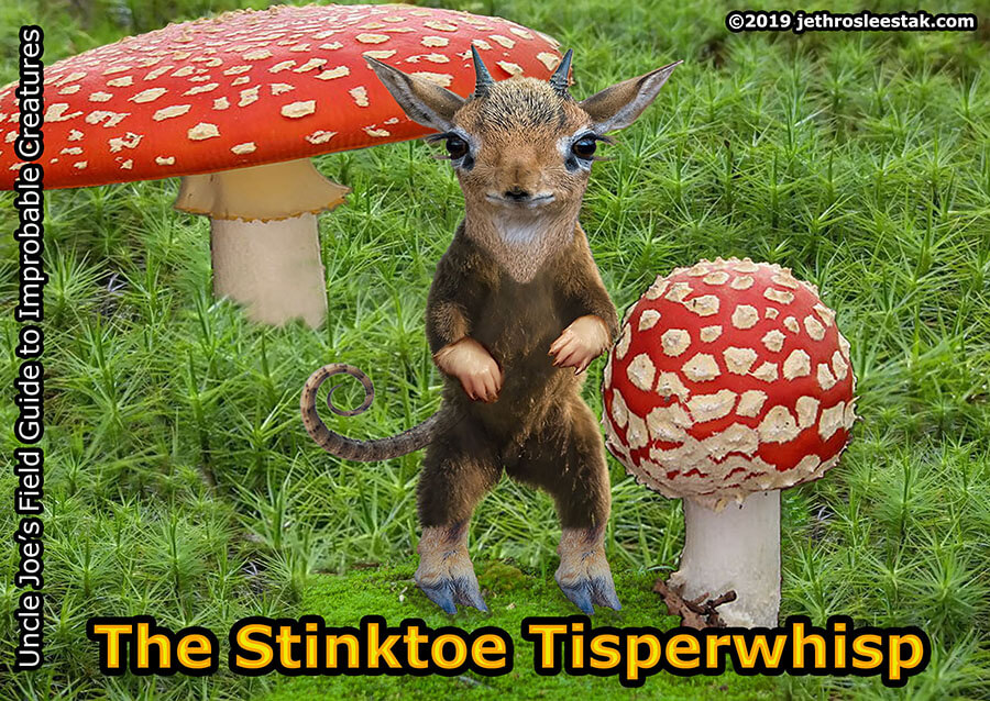 The Stinktoe Tisperwhisp Trading Card