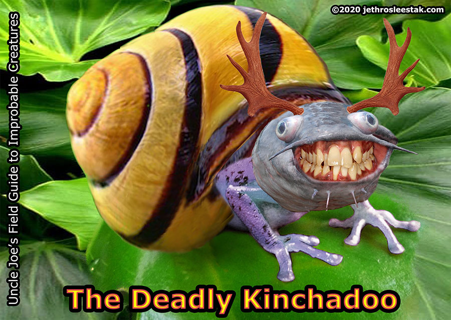 The Deadly Kinchadoo Trading Card